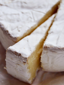 cheese005
