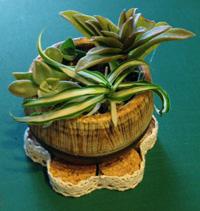 小さい植木鉢を乗せるためのコースターを作りました。